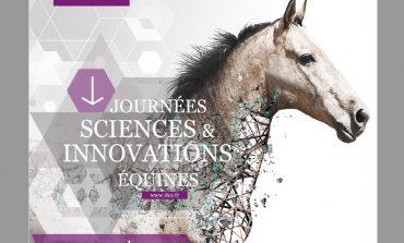 Infos cheval : mise à jour le 17 novembre 2020 !
