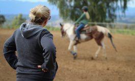 Professionnels de la filière cheval : comment fidéliser vos clients ?