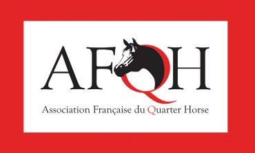 Quarante ans après la création de l'AFQH…