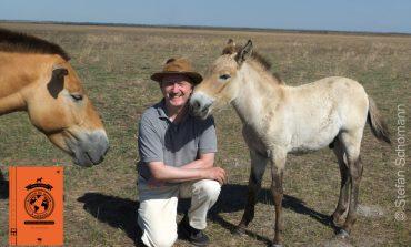 Les « Récits d'un cavalier-voyageur », réjouissante lecture