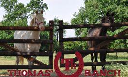 Au Thomas' Ranch tous les cavaliers trouvent leur bonheur