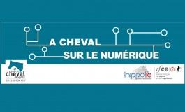 La vitrine du cheval 2.0 se déploie au salon du Cheval d'Angers (10 au 12 novembre 2017), les entreprises innovantes sont appelées à exposer