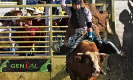 Saint-Agrève (07) - Equiblues 2014 - Rodéo - Diaporama Bulls