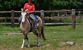 Acigné (35) – 23/24 mai 2015 – deuxième manche du Versatile Ranch Horse de la RHA