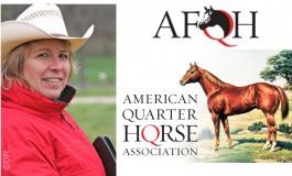 Journée Quarter Horses dans la Meuse le 11 novembre 2020