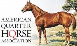 Association Française du Quarter Horse & American Quarter Horse Association