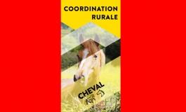 Vigilance et mobilisation de tous face aux attaques de chevaux