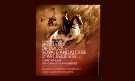 Quand les chevaux dansent à Montpellier…