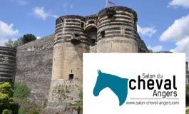 Salon du Cheval d'Angers, cap sur 2018