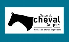 Salon : Angers passe un tour
