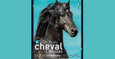 Angers prépare son 5ème salon du cheval
