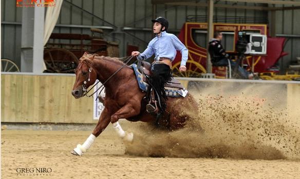 Paris Reining Classic au Parc Equestre Francilien au Pin (77) les 5/7 mai 2017