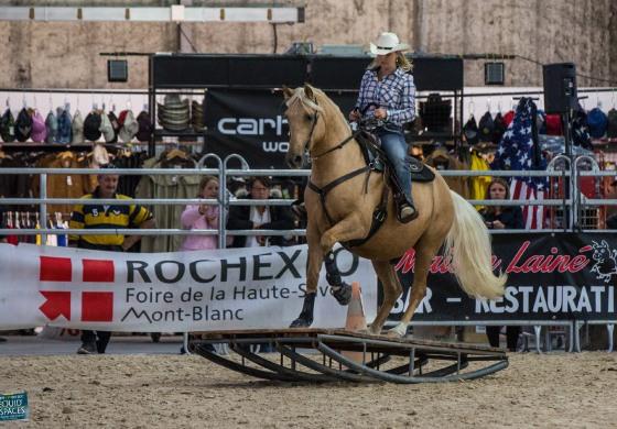 Equid'Espaces 2017 : mission accomplie pour l'équitation western !