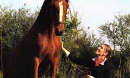 Quand une cavalière prend la plume pour célébrer le cheval