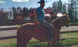Une rentrée très « bétail » au Holy'Day Ranch de Villette d'Anthon (38)