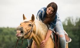 Comment contribuer au bien-être du cheval