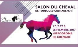 Le cheval en son royaume de Grenade sur Garonne début septembre 2017