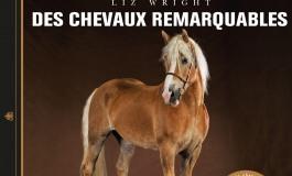 Des chevaux remarquables