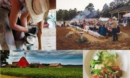 Le Colorado côté terroir ou l'agrotourisme au Far West