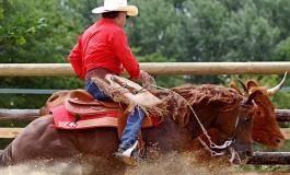 Contigné (49) Thomas' Ranch – 15 / 16 juin 2013 – Versatile Ranch Horse Cup (1ère manche)