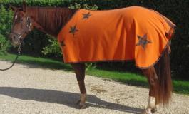 Du cousu main pour votre cheval !