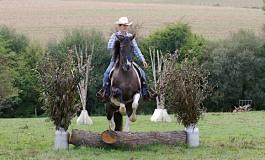 Versatility Ranch Horse - Résultats et photos des finales 2016 de la RHA