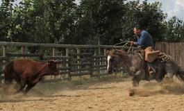 Versatile Ranch Horse - Contigné (49) – RHA deuxième manche – 25 et 26 juin 2016