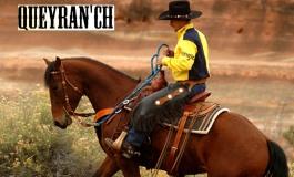 Avis aux chevaux de Gironde et alentours : optimisez vos compétences avec Thierry Dhaussy…