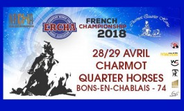 Reined Cow Horse : premier concours 2018 en Haute-Savoie