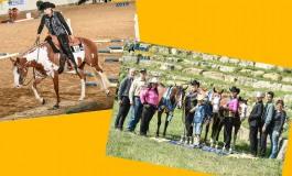 Entre performance et reining, retours médaillés à Valley View Stables (35)