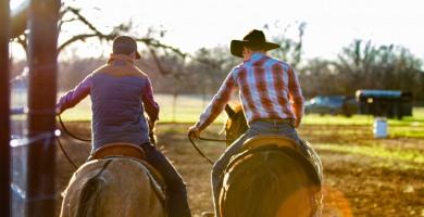 Enseignants d'équitation indépendants qui êtes-vous ?