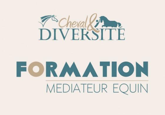 Formation à la médiation équine : rentrée en septembre 2020