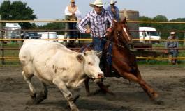 Goulet (61) - 4 et 5 octobre 2014 - Finales Ranch Horse Association