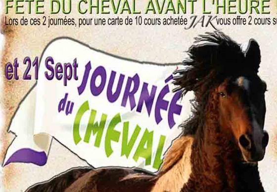 En septembre, le curly est en fête dans le Morbihan !