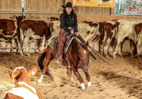 Cutting Show NCHA Approved chez Golden Horses Stables (Doubs)