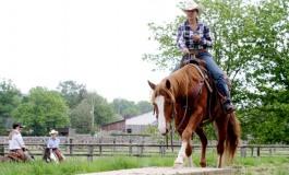 Acigné (35) - Challenge Versatile Ranch Horse de la Ranch Horse Association - 14 et 15 mai 2016
