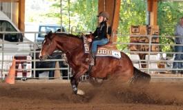 70 chevaux au Ranch de l'Etalon Blanc pour le Roux Spring Slide à Entraigues (84) les 8 et 9 avril 2017
