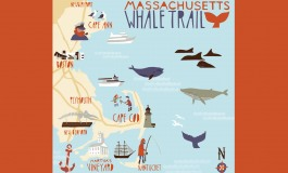 Le Massachusetts par le chemin de la baleine…