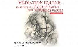 Médiation équine : deux jours indispensables autour du cheval partenaire