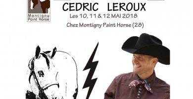 Cédric Leroux à Montigny Paint Horse (28) début mai 2018