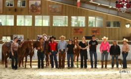 Le Pin (77) - Parc Equestre Francilien - 8 juin 2013 - CCHA - Initiation au pro cutter