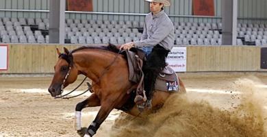 Le Pin (77) Parc Equestre Francilien - Paris Reining Classic – 4 au 7 août 2016 - 150 reining horses