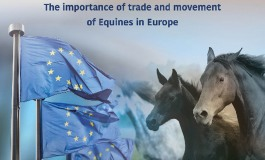Quand l'Europe parle cheval…
