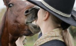 N'hésitez plus à parler « bébé » à votre cheval !