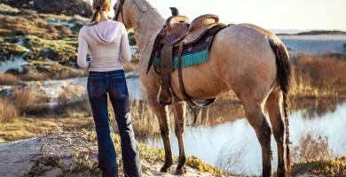 Crise sanitaire et gestion des chevaux : des précisions en temps réel