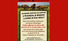 Le 8 mai 2017, les bébés bisons vous attendent à Lanuejols
