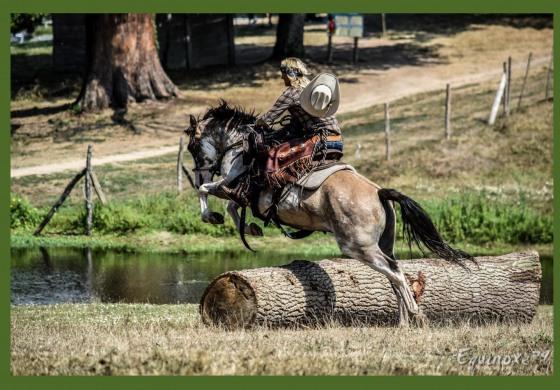 Emmenez votre cheval à la plage le 14 juillet…