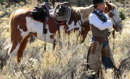 Road Book au Nevada avec les Buckaroos