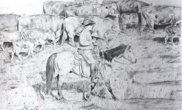 Ranch Cow Sense de Villeneuve la Raho (66) : demandez le programme