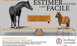 Le poids d'un cheval s'estime désormais en quelques clics…